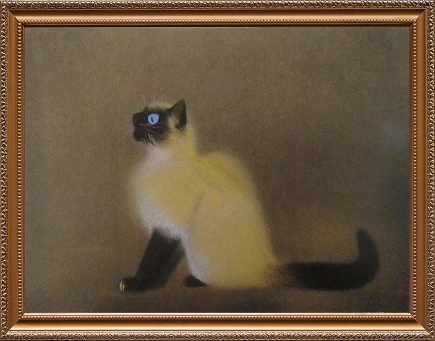 ペルシャ猫の図